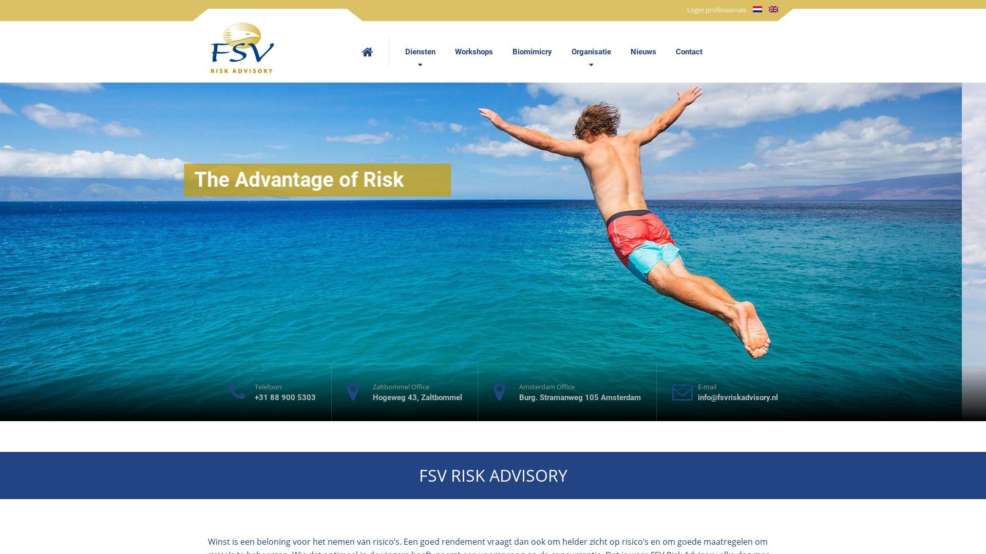 Portfolio E-Markers | FSV Risk Advisory